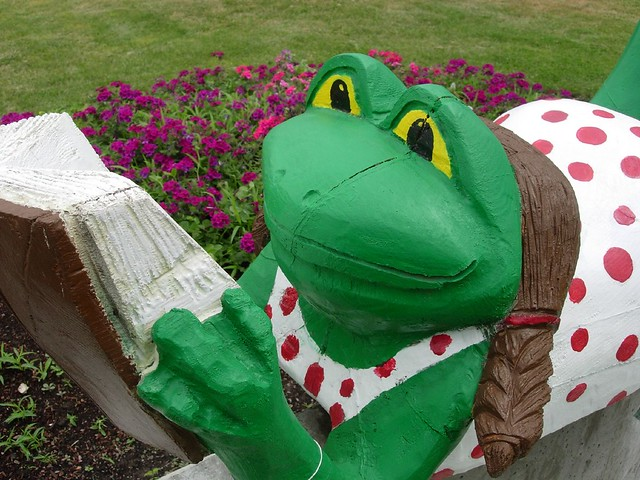 public library frog explore lady fox s photos on flickr