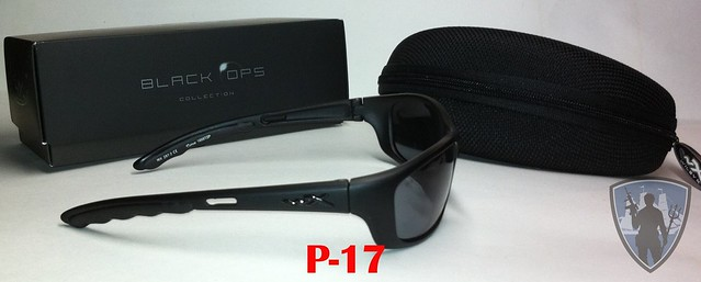 Wiley X Sunglasses Review 45