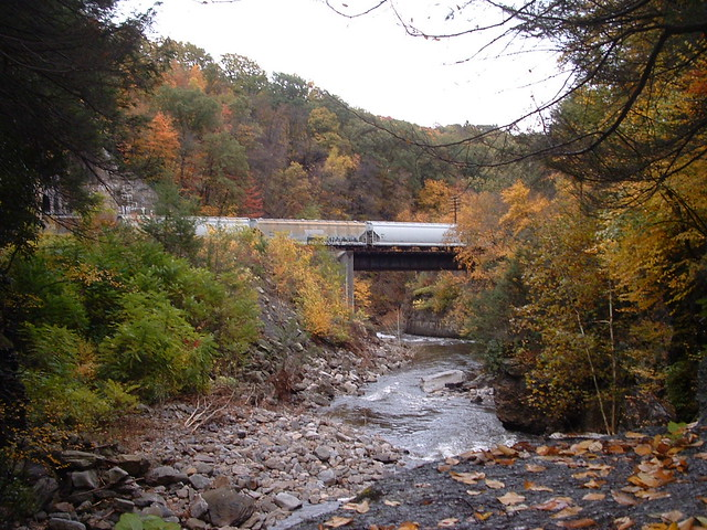 Fall Foliage Train Tours Catawese