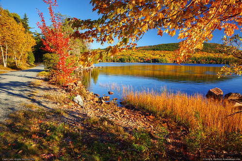 Acadia National Park, Fall Foliage | by Greg from Maine