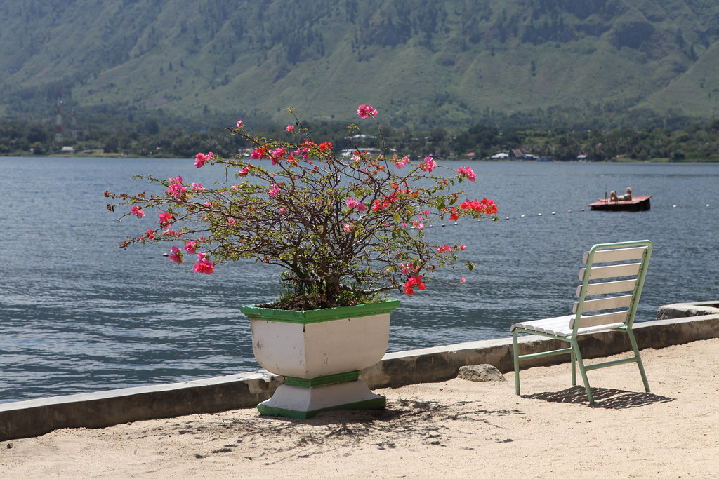 Hotel A Toba Del Mar