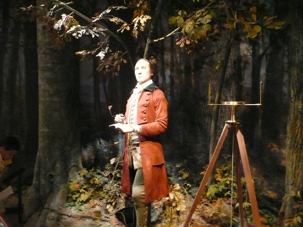 Young George Washington Surveyor Bubby Flickr