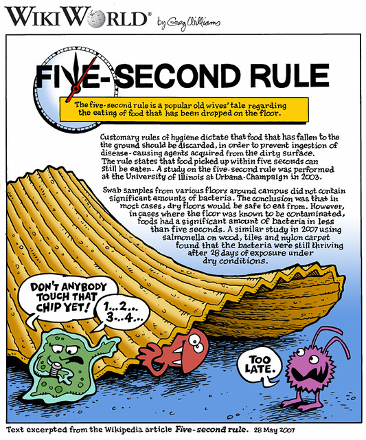 5 second rule pdf free