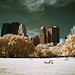 The Central Park in Infrared