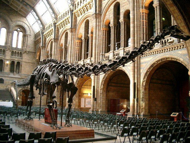 How To Get To The Natural History Museum From Th