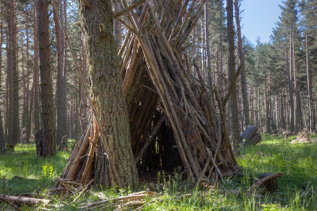 Wooden Tent Tent Made From Branches In The Foret De
