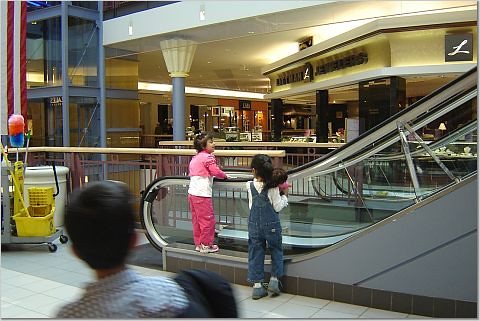 The construction of Brass Mill Center essentially replaced the older Naugatuck Valley Mall, built in and located on the city's northeast suburban side. In the process, the Filene's (originally a G. Fox & Co. store) and the Sears stores relocated to Brass Mill Center.