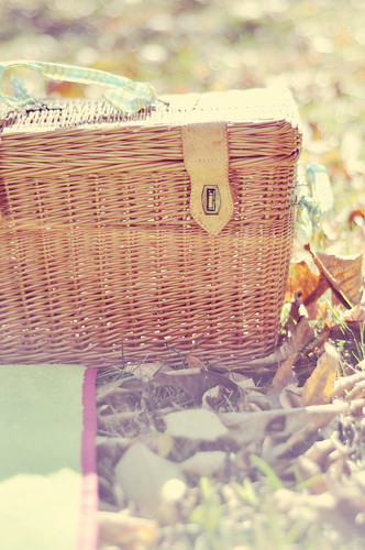 picnic basket. | by tahnijoy