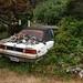 BMW 320i: Won't Last Long!