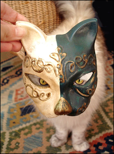 the cat and the cat mask | by *zillig
