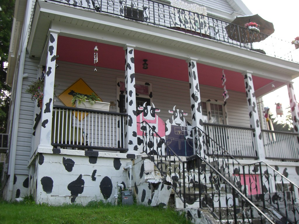Cow House in Morgantow...