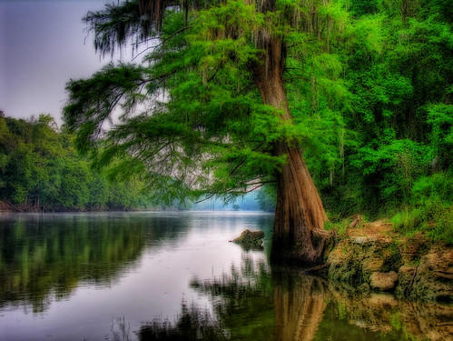 Flint River - Albany Real Estate - Albany GA - Zillow