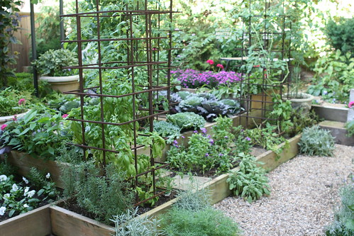 Kitchen garden at Bolen residence | by Gardening Solutions