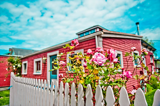 pink roses, white picket fence and a red house | by tibchris