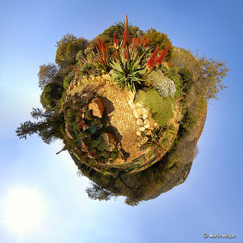 Botanical Garden (Stereographic) | by Martin_Heigan