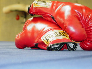 Boxing Gloves | by KWDesigns