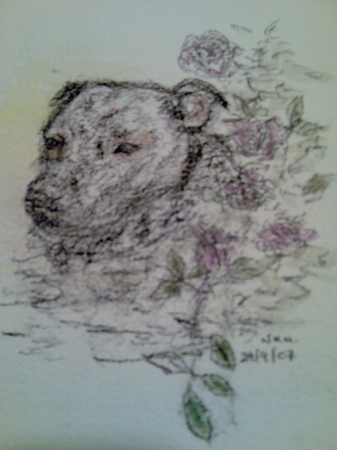 Staffy Birthday Card I M Going To Eat Your Cake