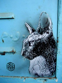 C215 - Mirleft (Morocco) | by C215