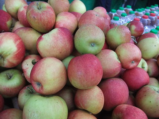 SFO Day 2: Apples from the Ferry Plaza Farmers Market | by swampkitty