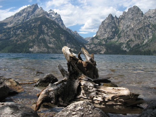 Jenny Lake Driftwood, Grand Teton National Park, Wyoming | by Ken Lund