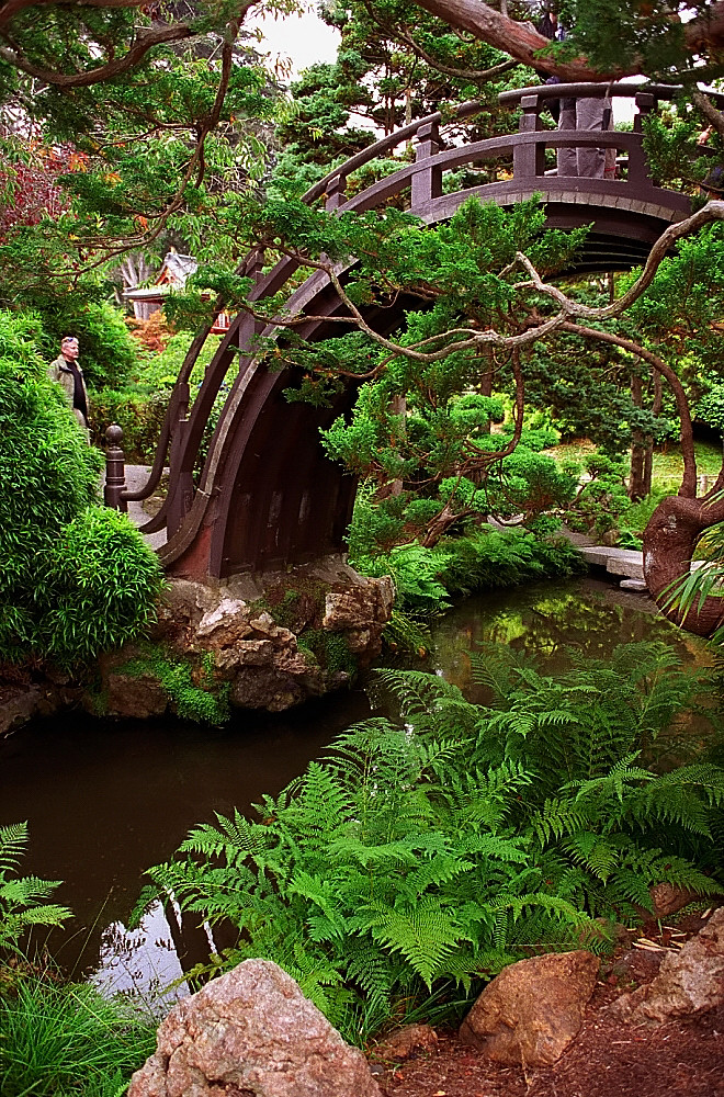 San francisco golden gate park japanese tea garden ha - Japanese tea garden san francisco ...