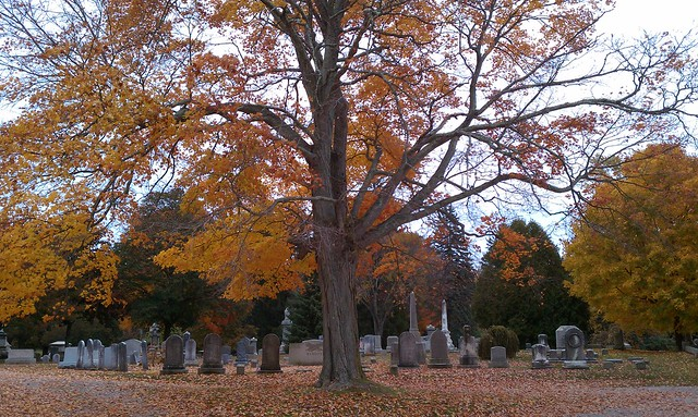 Mystic Cemerery