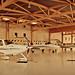 309/365 Hangar 14