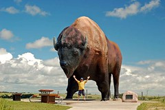 World's Largest Buffalo | by istargazer