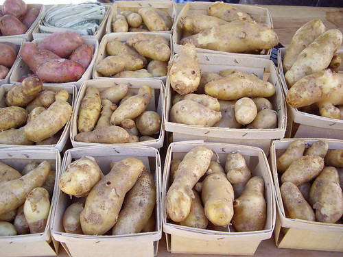 091507potatoes | by swampkitty