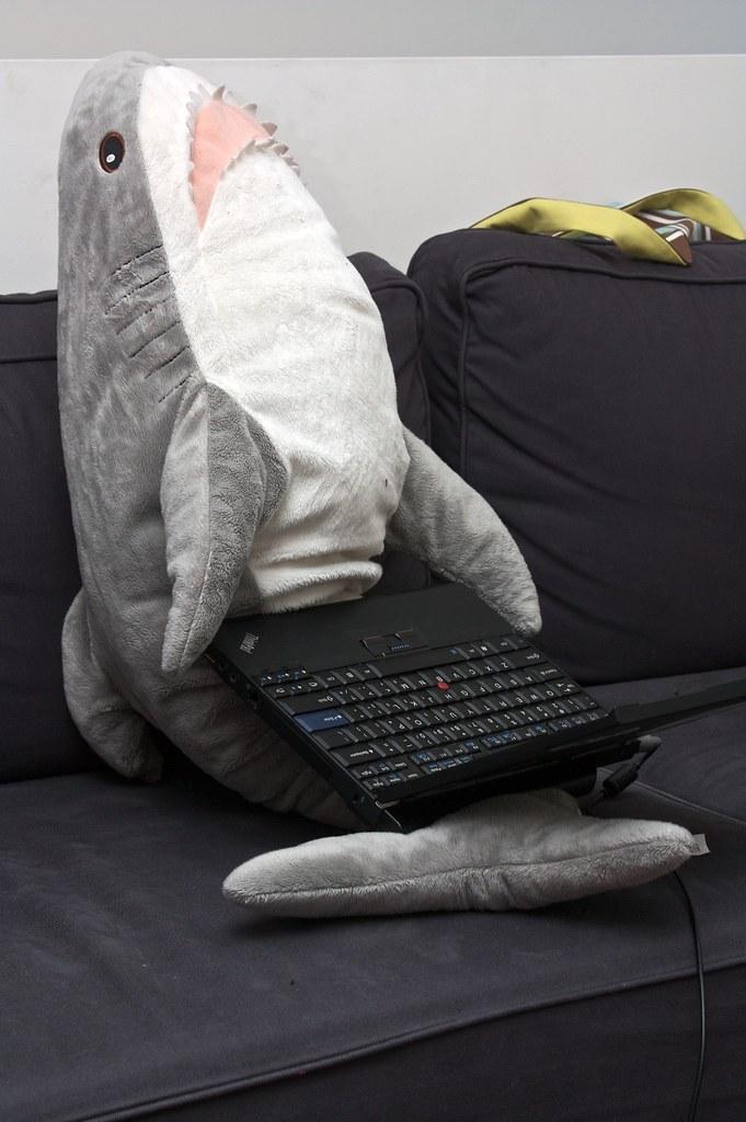 Klappar Haj Code Shark Sharks Prefer Thinkpad Flickr