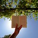 Reading book against sun