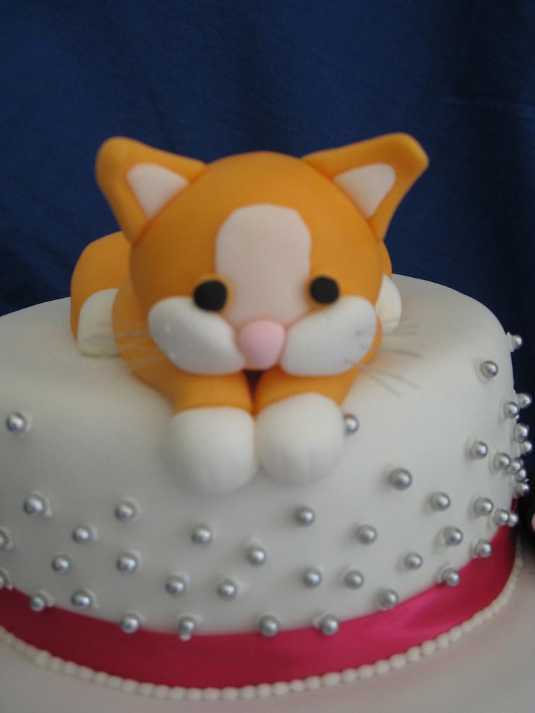 Kitten Cat Cake Samantha Tadman Flickr