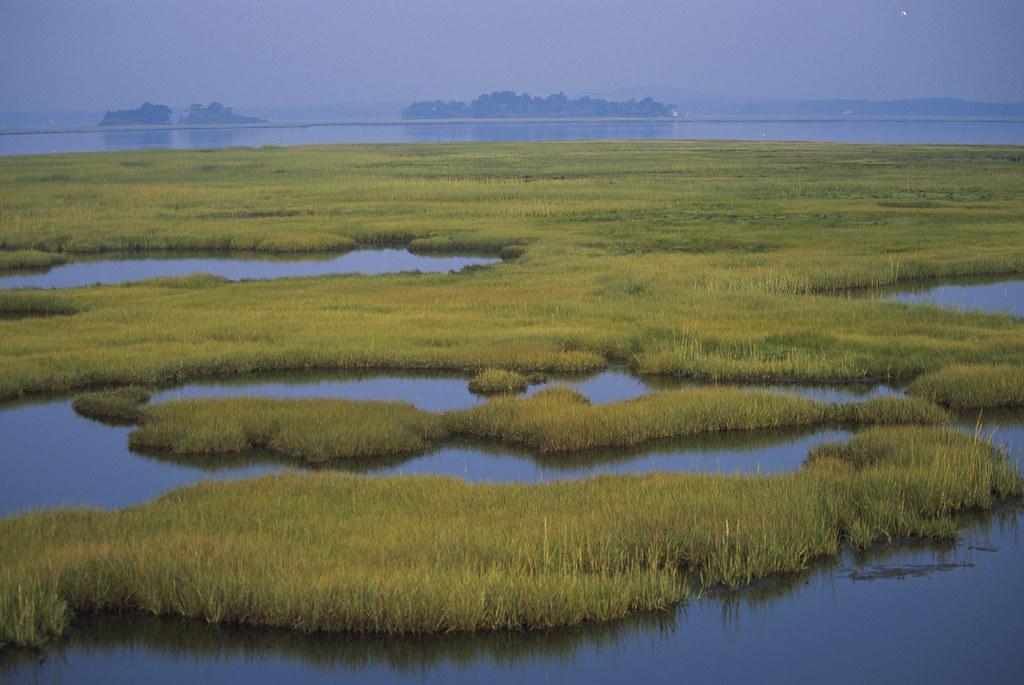 Coastal Wetlands Coastal Wetlands At Parker River National Flickr - Coastal wetlands map us