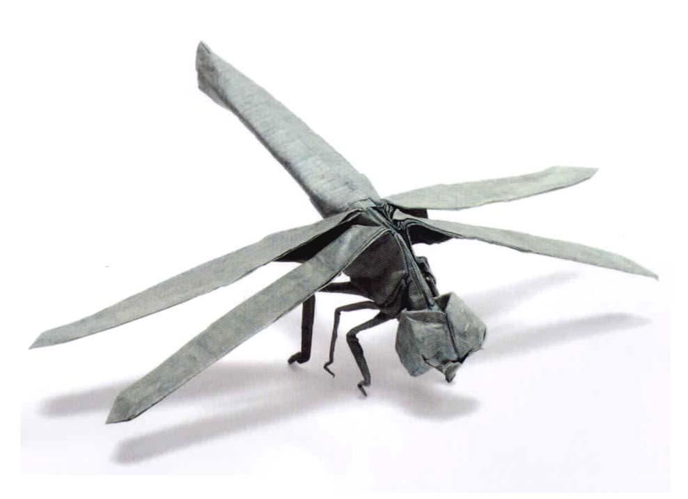 Satoshi Kamiya Dragonfly Dragonfly 1.1b by Satoshi