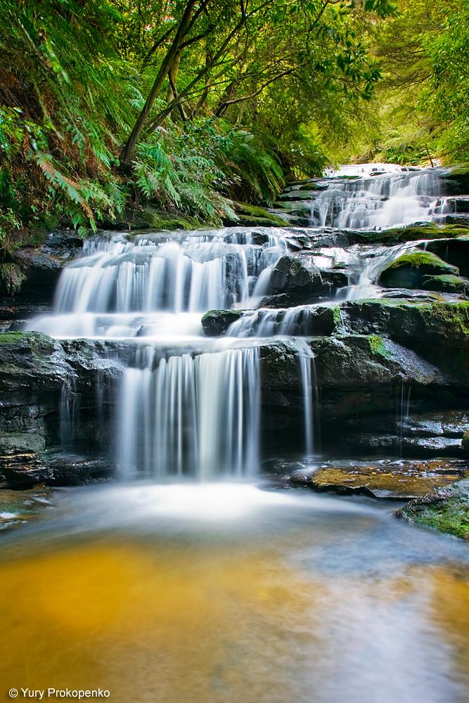 Leura Cascades Waterfall In Blue Mountains Leura