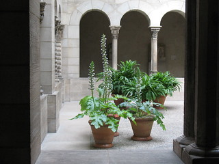 Potted Plants, St-Guilhem Cloister | by The Loopweaver