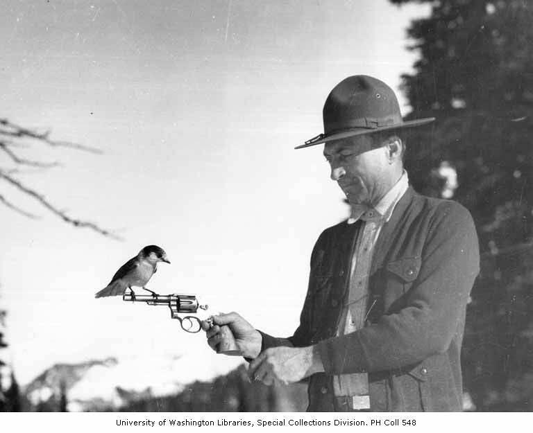 Robber Holding Gun Tomlinson Holding Gun With