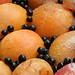 Apricots & Elderberries