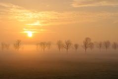 Amstel sunrise - Netherlands by Willem B.
