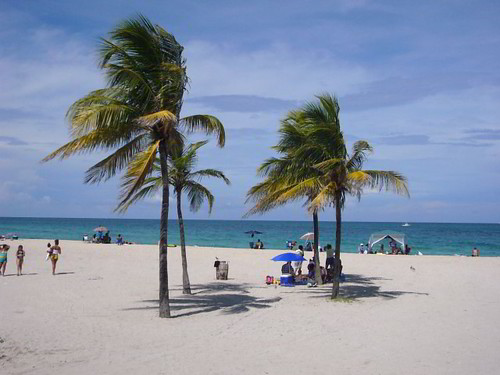 Ocean Models Miami Beach Fl