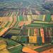 Agricultural Patchwork