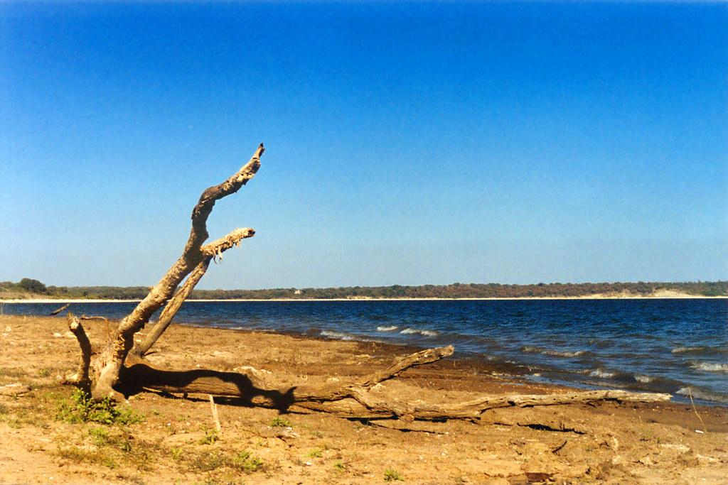 Image result for Lake Bridgeport