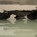 """Arky"" Skylighter Gunship Specs by Joz"