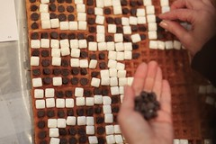 Chiclet and Chocolate QR