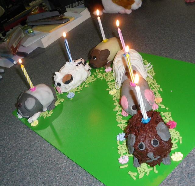 Guinea Pig Cake Pan