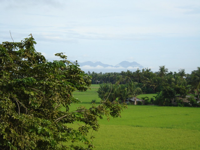 Calabanga Philippines  city images : Recent Photos The Commons 20under20 Galleries World Map App Garden ...