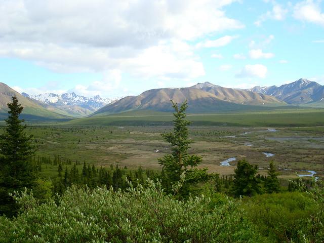 Tundra Und Taiga