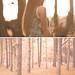 uneverknewwhathityouintheforest #2