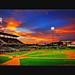 Baseball night DSC_5573 B