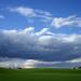 Farmland #2
